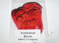 lady Amherst tippet feathers (12 fs) red