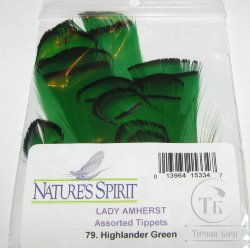 lady Amherst tippet feathers (12 fs) highlander  green